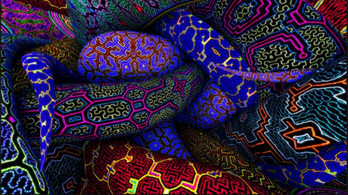 What is Ayahuasca? | Psychotravels co